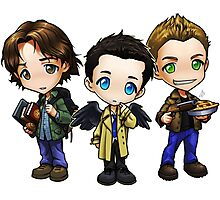 Team Free Will - Chibi Style Photographic Print