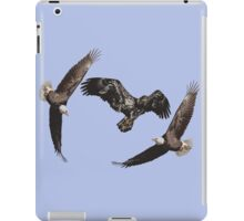 Isolated American Bald Eagles-1  iPad Case/Skin