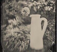 Dahlia by Paul Alsop