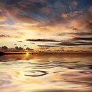 Pukerua Bay Liquid Gold by Ken Wright
