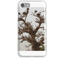 Baobab iPhone Case/Skin