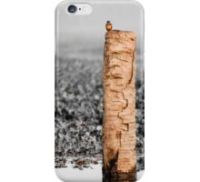 Kingfisher on a stump iPhone Case/Skin