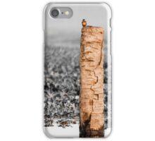 Kingfisher on a stump iPhone Case/Skin