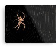 creepy spider Metal Print