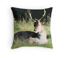Cheeky! Throw Pillow