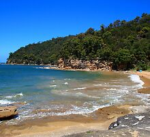 Flint & Steel Beach, Ku-ring-gai Chase National Park by Spirit Level Creations