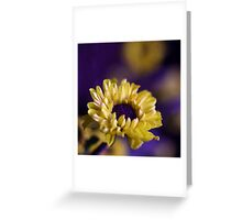 Colour Of Life XXXV Greeting Card