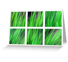 Watching the Grass Grow Greeting Card