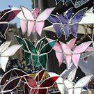 Butterflies by TerraChild