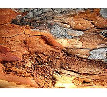 Red Earth Landscape Photographic Print