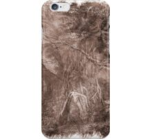 The Atlas of Dreams - Plate 2 iPhone Case/Skin