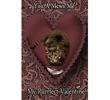 YOU A-MEWS ME...MY PURRFECT VALENTINE Photographic Print