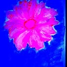 Pink Flower on Blue by Rose Loya