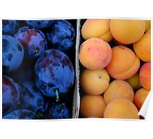 Fruit Segregation Poster