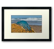 Blue Jellyfish 02 Framed Print