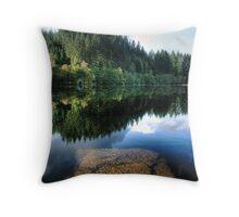 Wondrous Reflections Throw Pillow