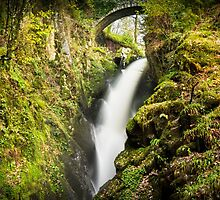 Aira Force by Ralph Goldsmith