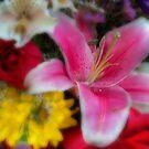 Spring Bouquet by Nikki Collier