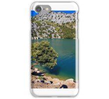 Verdena Montana iPhone Case/Skin
