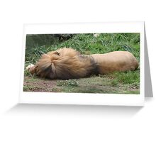 Let me rest please Greeting Card