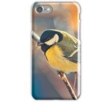 great titmouse in winter time on a branch iPhone Case/Skin