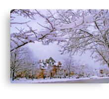 Winter in New England  Metal Print