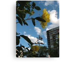 City Flowers Canvas Print