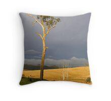 Mirannie Valley Throw Pillow