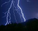 Nature's Raw Power by Daniel J. McCauley IV