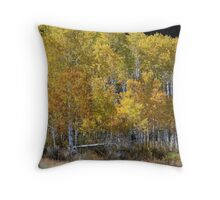 Aspen Changing Color Throw Pillow
