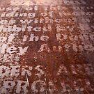 Warning in rust by HeidiD