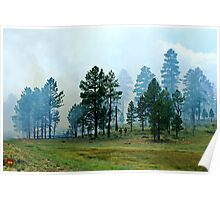 Controlled Burn Poster