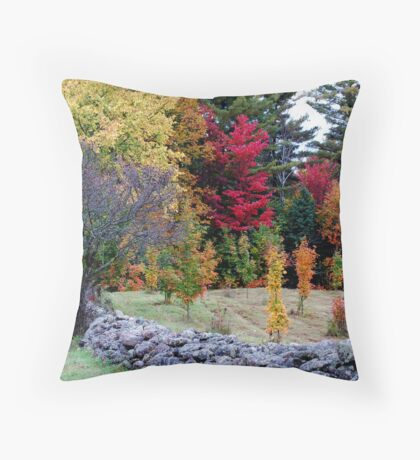 Rock Fence and Colours Throw Pillow