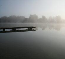 Foggy Morning at the Lake  by Daniela Weil