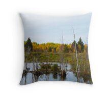 Beaver pond & dam Throw Pillow