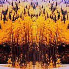 """Circle Drive"" © 1979-2008 Brad Michael Moore by Brad Michael Moore"