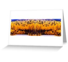 """Circle Drive"" © 1979-2008 Brad Michael Moore Greeting Card"