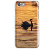 Swan on golden pond iPhone Case/Skin