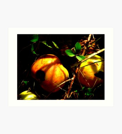 .....under the apple tree. Art Print