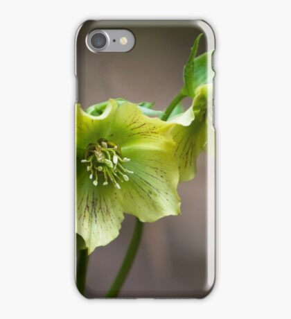 Yellow and Green Flowers iPhone Case/Skin
