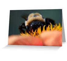 Bee's Eye View Greeting Card