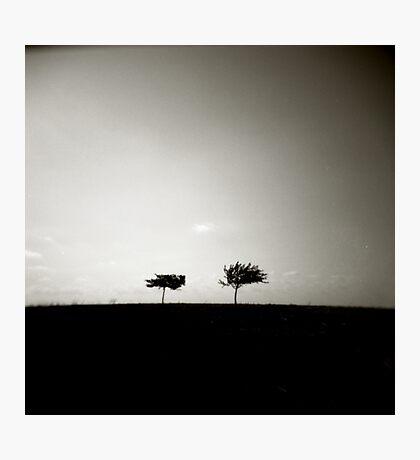 two II Photographic Print