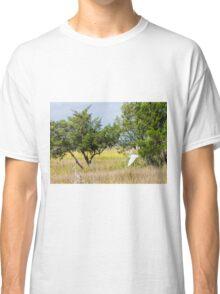 Snowy Egret Over Marsh Classic T-Shirt