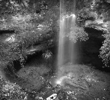Cave Garden. Mt. Gambier S.A. by Baldric
