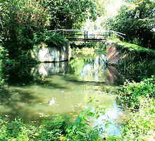 The Wey Navigation - Through The Lens  by Colin  Williams Photography