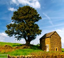 Longnor Farm Building by David J Knight