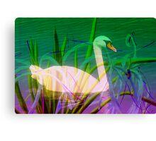 Swan in flowery reeds  Canvas Print