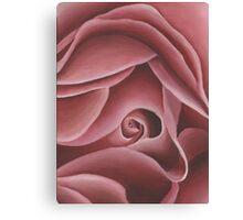 Pink Rose Print Canvas Print