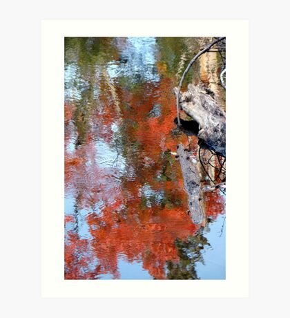 Reflection of fall colours Art Print