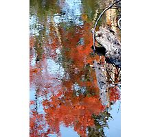 Reflection of fall colours Photographic Print